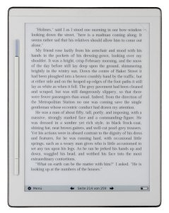 Irex  Digital Reader 800S