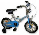 Pidapi Junior Cycle